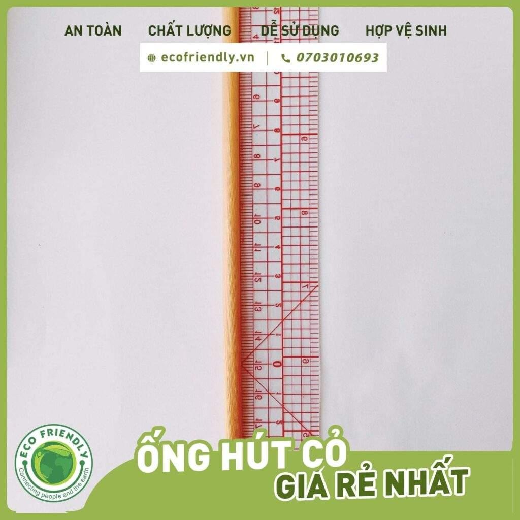 Xuất khẩu ống hút cỏ ecofriendly.vn +84703010693