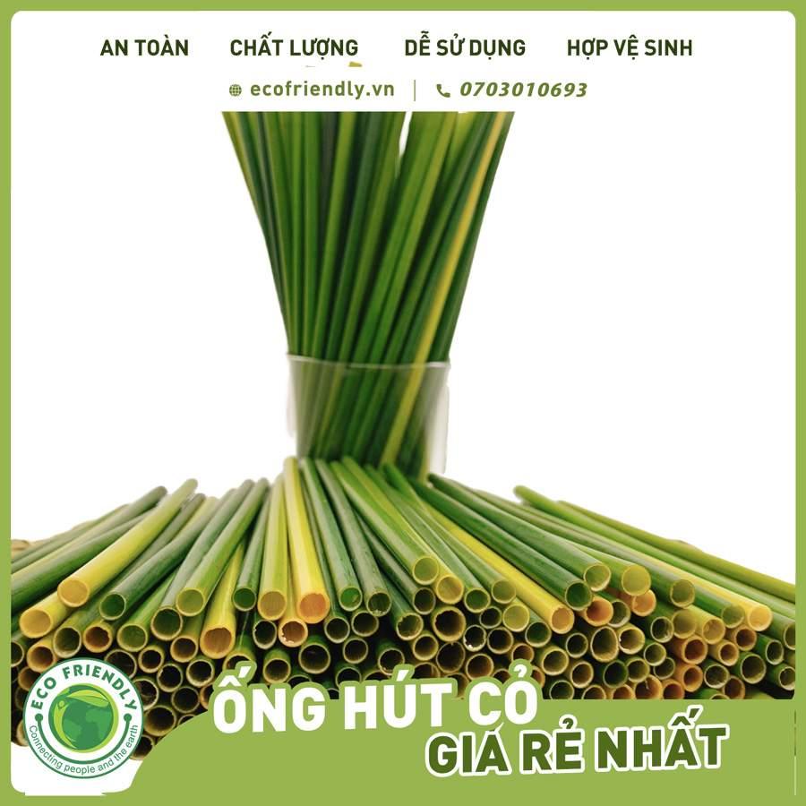 Nhược điểm của ống hút cỏ bàng - ống hút cỏ bàng tươi có thể bảo quản được 1.5 tháng ảnh Ecofriendly.vn +84703010693