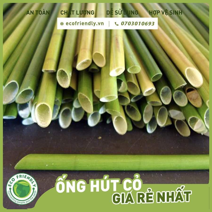 thuyết trình về ống hút cỏ bàng phần 2 ecofriendly.vn +84703010693